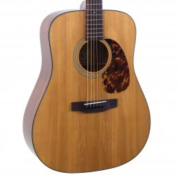 Recording King Torrefied Adirondack Spruce Top, Dreadnought
