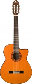 Washburn C5CE Classical Guitar