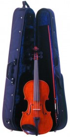 Palatino VA-850 Vivace Dolce Viola Outfit - 16 In