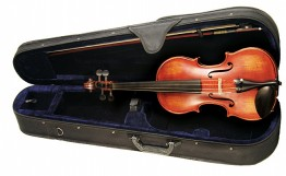 Palatino VN-950 Anziano Violin Outfit, 4/4 Size
