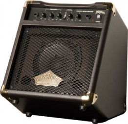 Washburn WA20 20 Watt Acoustic Amplifier
