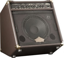 Washburn WA30 30 Watt Acoustic Amplifier