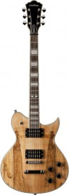 Washburn WIDLXSPLTD Classic Idol Series Spalted Maple