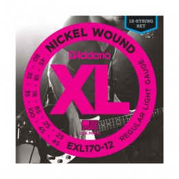 D'Addario EXL170-12 Nickel Wound 12-String Bass, Light, 18-45