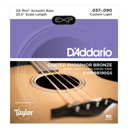 D'Addario Coated Phosphor Bronze, Taylor GS Mini Scale, 37-90