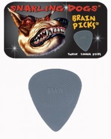 Snarling Dogs Brain Picks 12-pack Tin, 1.00mm